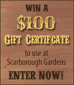 Enter to Win a $100 Gift Certificate